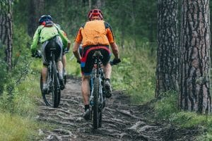 Zwei Mountainbiker im Wald