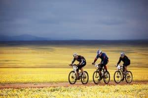 Drei Mountainbiker auf offenen Feld